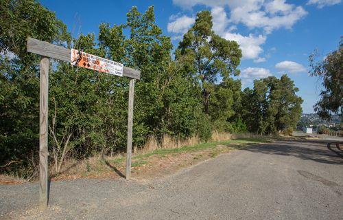 Gravel road at Black Hill reserve