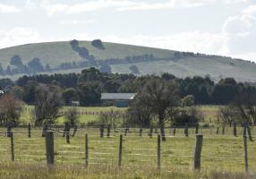Miners Rest landscape